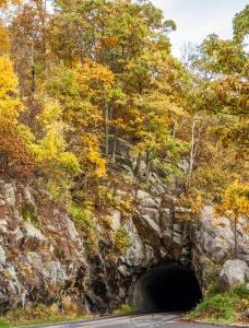 Tunnel near Thornton Gap