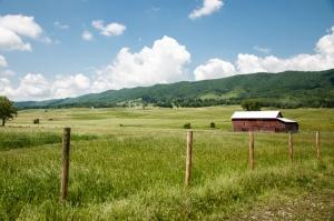 Blue Grass Valley